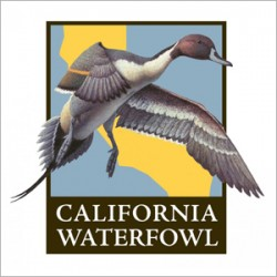 californiawaterfowl